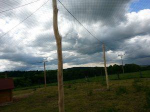 Voliérová síť na chov bažantů PET 55/1,4 mm černá - 2